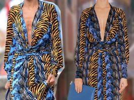 Nicole Richie wearing Issa London denim zebra print maxi silk dress