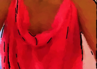 monica style idea shimmer salmon crepe de chine dress illustration