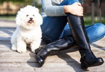 black knee high boots cr