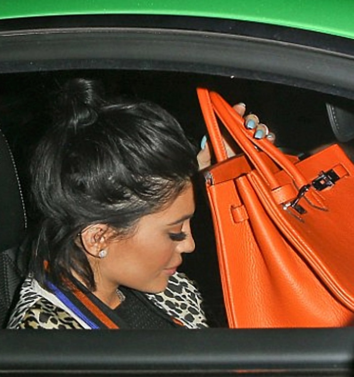 bf3351f53e7 The Birkin - yeah it costs a lot of money but it s still just a bag ...